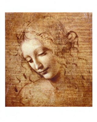 Leonardo, testa di fanciulla