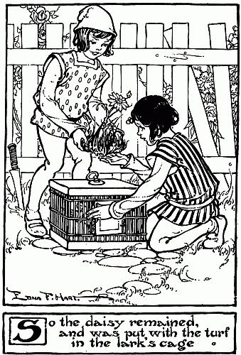 p017i