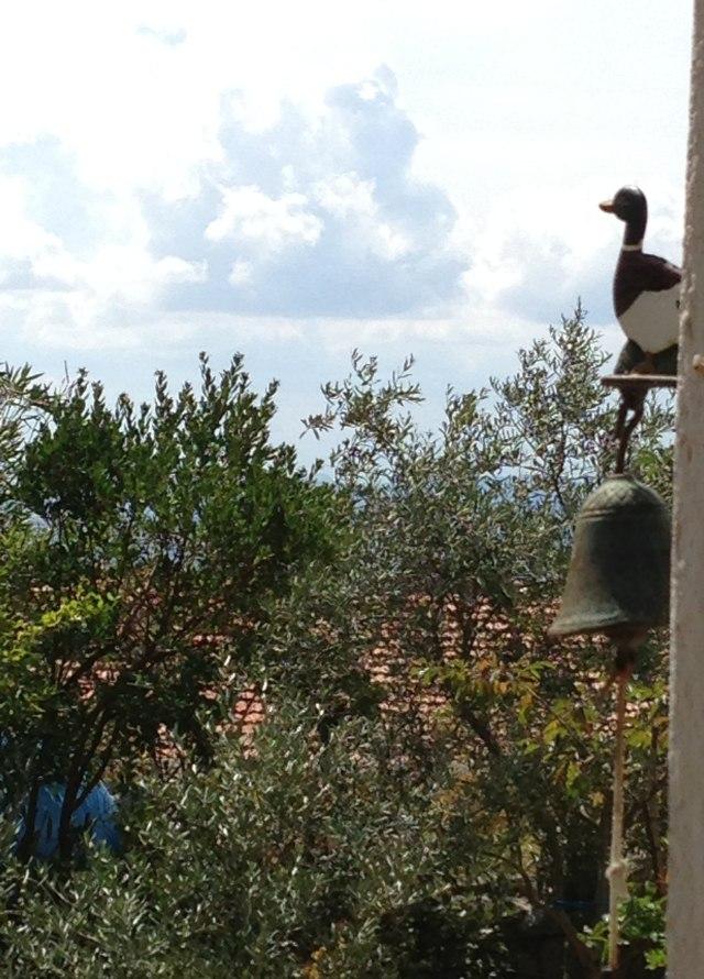 La leggenda dell ulivo e della palma domenica delle - Colorazione pagine palma domenica ...