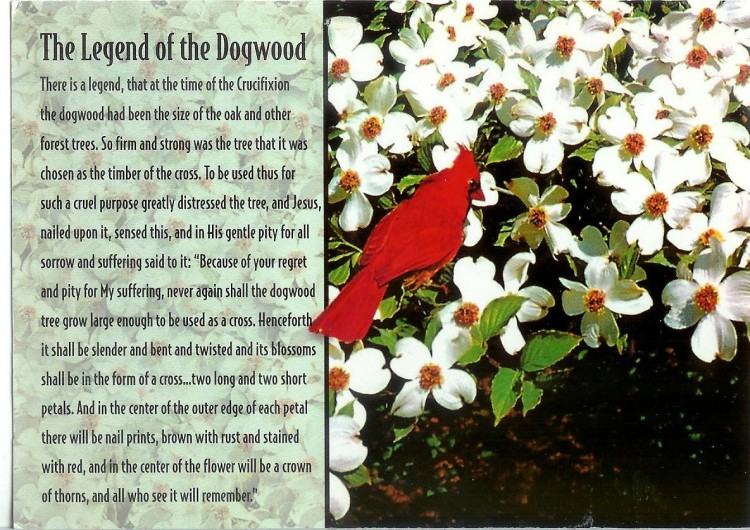 legend-of-dogwood