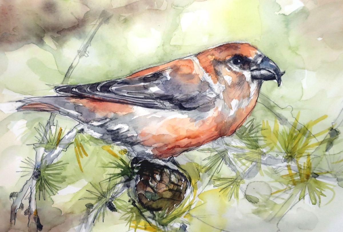 La leggenda dell'uccellino crociere. Leggende della S.Pasqua