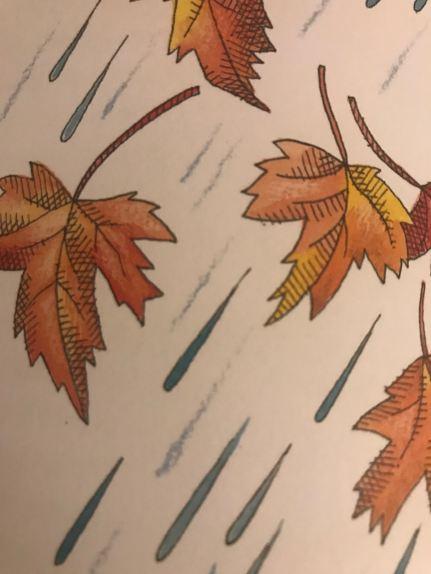 la pioggia 2